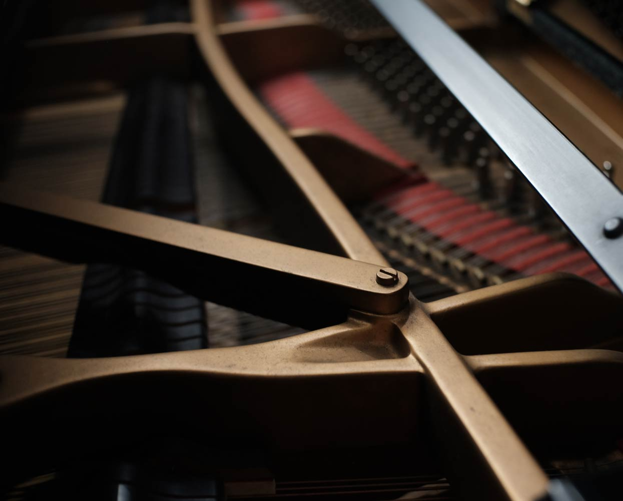 inside of a grand piano with strings and tuning pins on display